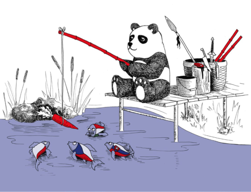 Webinar: China'sSticks and Carrots in Central Europe
